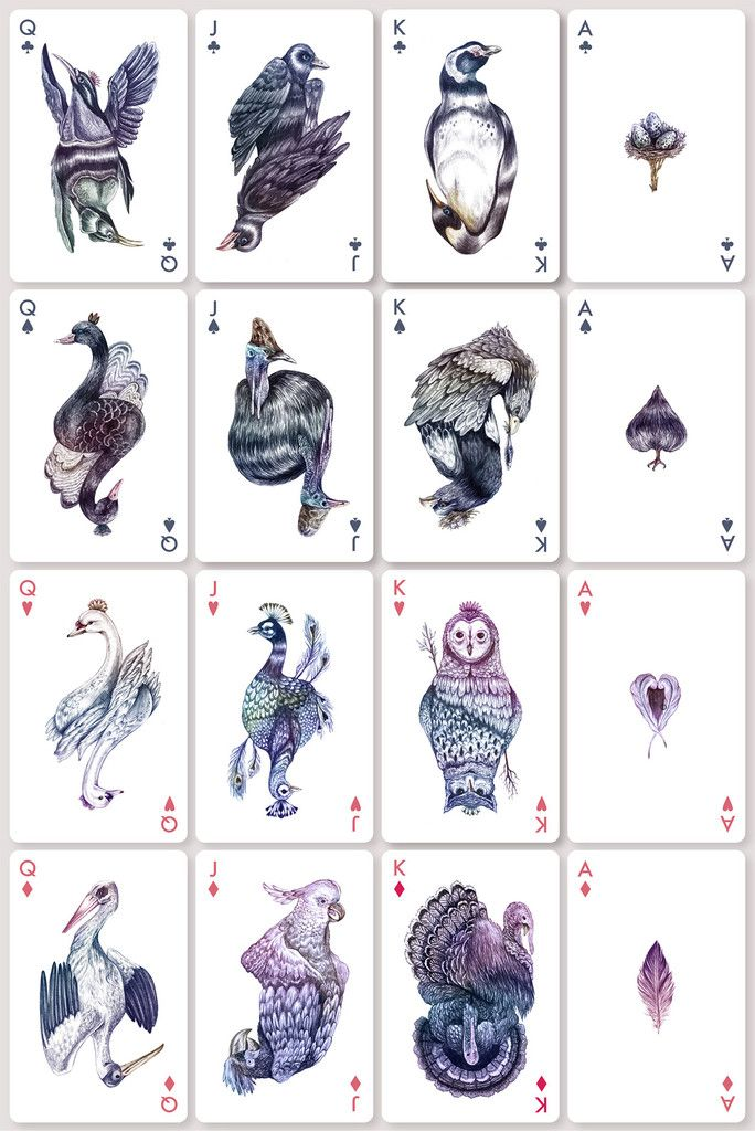 Want!  Aves Playing Cards – The Colossal Shop #birds #aves