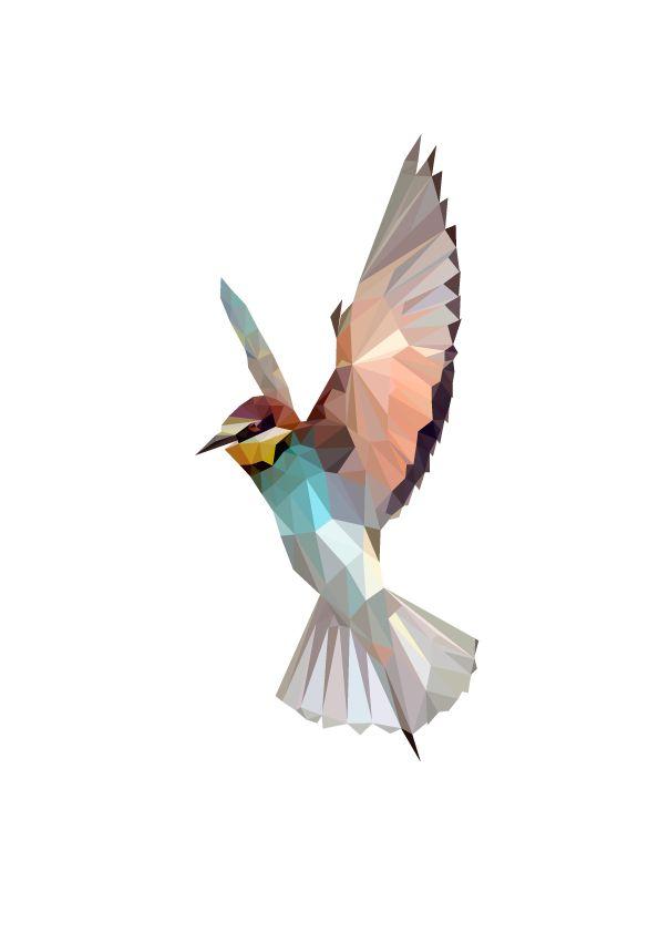 Bird polygon - Google 검색