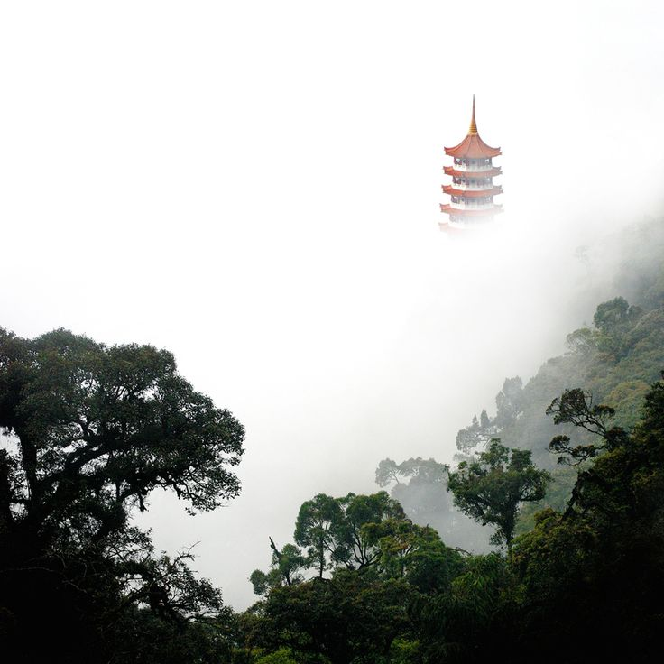 genting in taiwan Buy tickets for ozzy osbourne: no more tours 2 at genting arena on 09/02/2019  at livenationcouk search for united kingdom and.