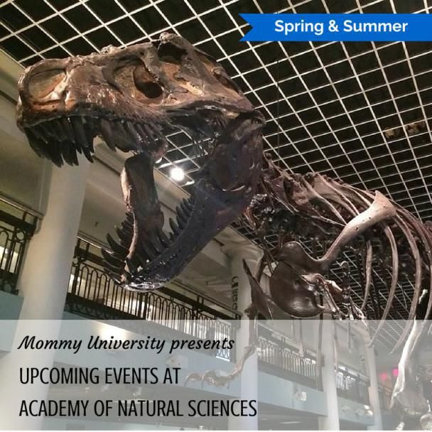 SPRING AND SUMMER EVENTS AT THE ACADEMY OF NATURAL SCIENCES by Mommy University at www.mommyuniversitynj.com