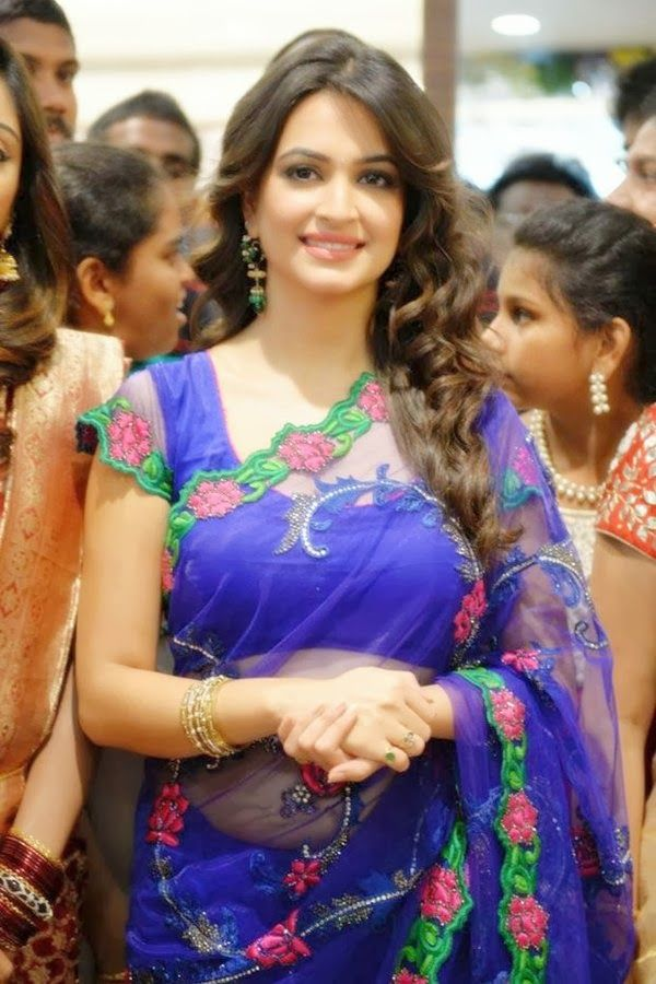 Kriti Kharbanda in Saree