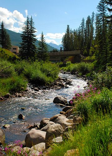 11 best gore creek vail colorado images on pinterest for Beaver creek fly fishing
