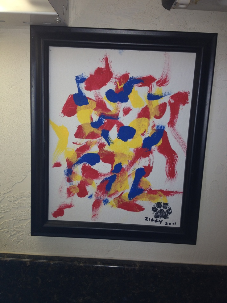Ziggy the Painting Pekingese