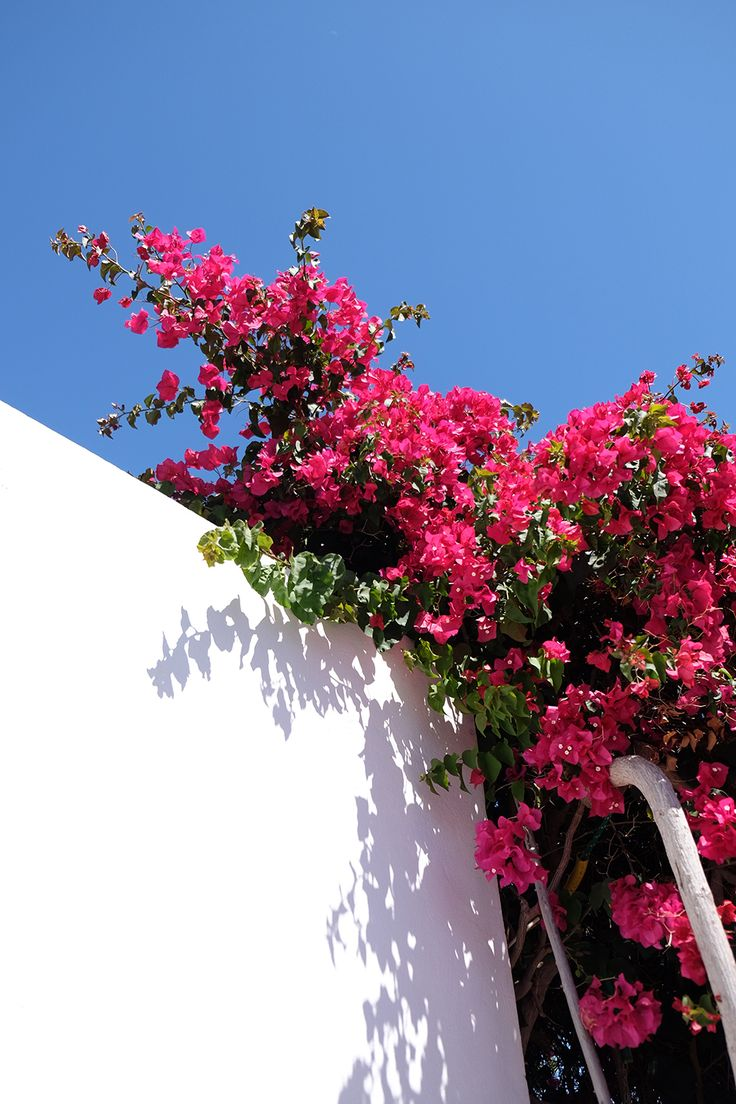 What to see and do in Playa Blanca and Puerto Del Carmen, Lanzarote