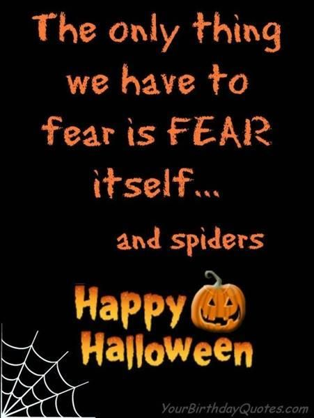 Delightful Halloween Quotes | Quotation Inspiration