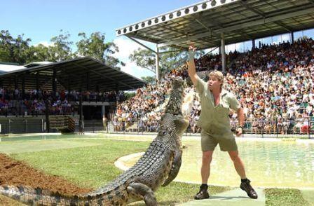 Visit Australia Zoo. #airnzsunshine
