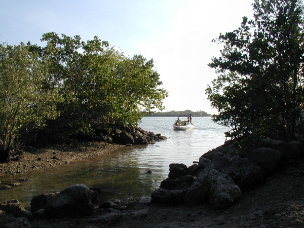 Beginning of #kayak trail from #BiscayneBay surrounded by mangroves. #Miami #Kayaking: Florida S Parks, State Parks, Oleta River, Biscaynebay Surrounded, Miami S Sexiest, Hidden Beaches, U.S. States, Sexiest Hidden