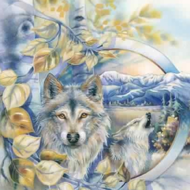 Wolves,     Jody Bergsma