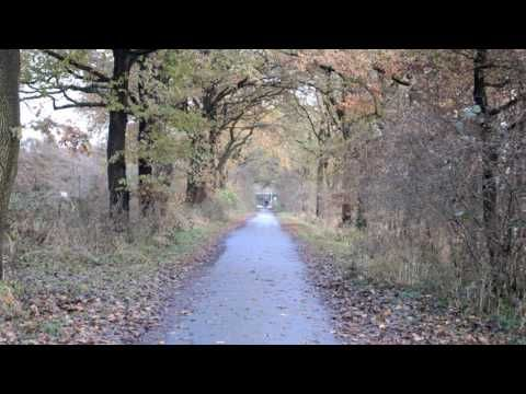 2016-11-16 Mid-November Walk through the Osdorfer Feldmark (9:31min)   #KokopelliBeeFree #KBFPhotography #KBFWalk