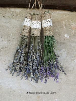 °lavanda° Lavender fest, Tihany, Hungary