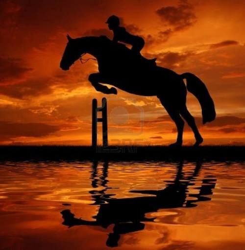 Horse jump at sunset with the horse and rider reflected in the water. Gorgeous glowing orange sky. Beautiful black horse silhouette. #horsesilhouette