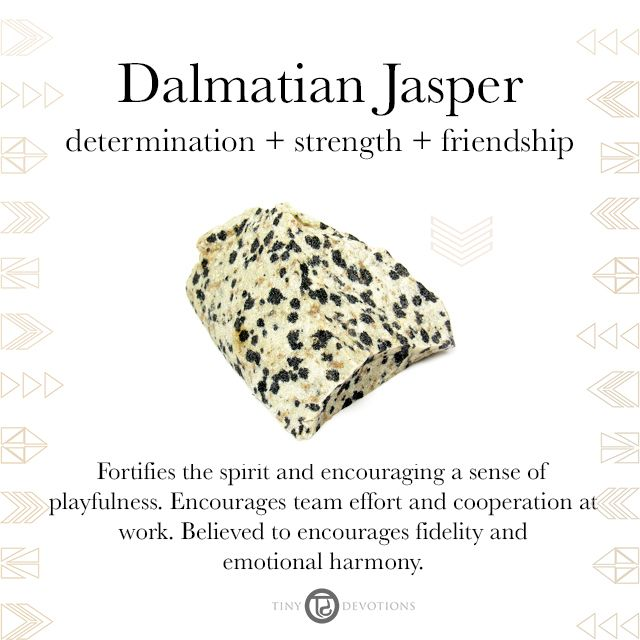 Dalmatian Jasper | Gemstones & Sacred Materials | Tiny Devotions | Mala Beads