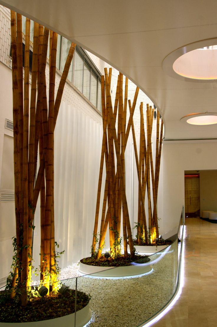 Jardin en espacio de acceso a edificio corporativo proyecto realizado