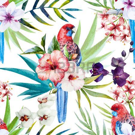 Prachtige vector patroon met mooie aquarel rosella vogel patroon Stockfoto