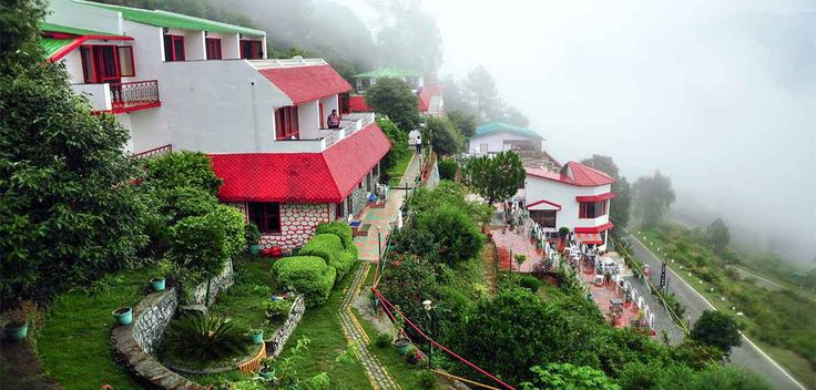 Bluepine Resort in Chail 12th to 15th August long weekend packages