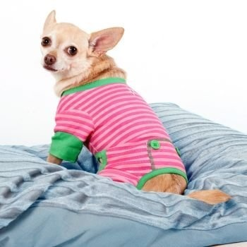 Fashion Pet Pink And Green Striped Pjs Medium from Ethical Products/Fashion Pet   $6.92   www.buydogsweaters.com