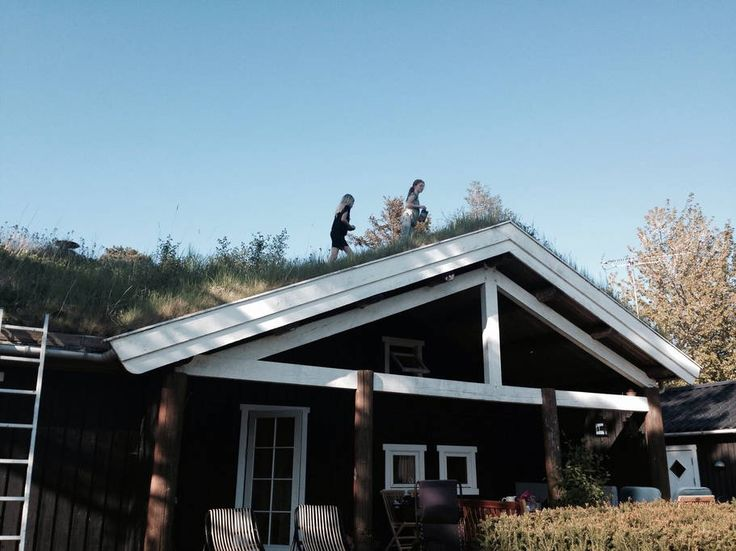 Wooden cabin, summerhouse near sea - Häuser zur Miete in Tisvilde