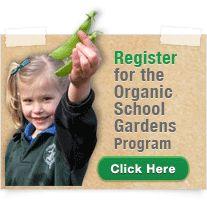 sustainability - in school garden program, whole school involvement