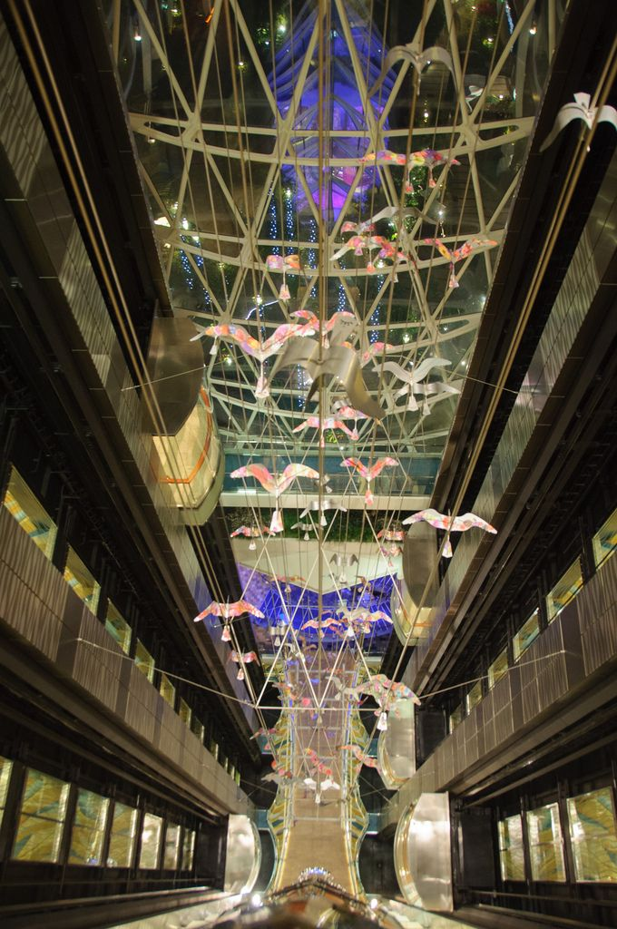 Elevator art, Oasis of the Seas.Cruises Boats, Royal Caribbean, Elevator Art, Cruises Ships, Cruises Info, Caribbean Oasis, Caribbean Cruises, Cruises Vacations, The Sea
