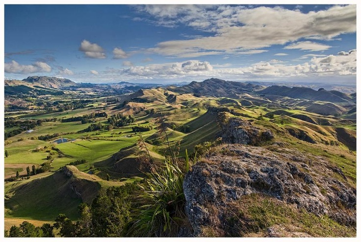 Te Mata Peak, Havelock North, NZ. I loved seeing Hawkes Bay from here :)