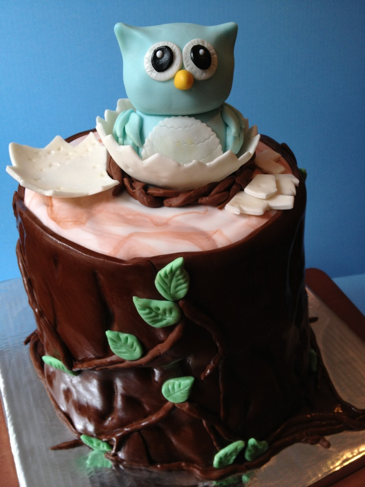Baby boy owl baby shower cake...coming out off eggshell...so cute!