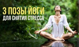 3простые позы йоги для снятия стресса