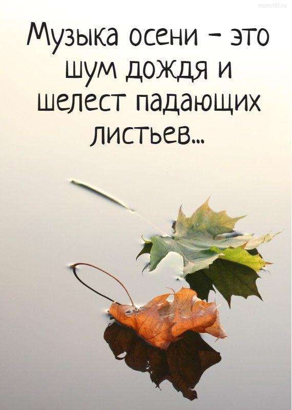 Цитаты в картинках об осени