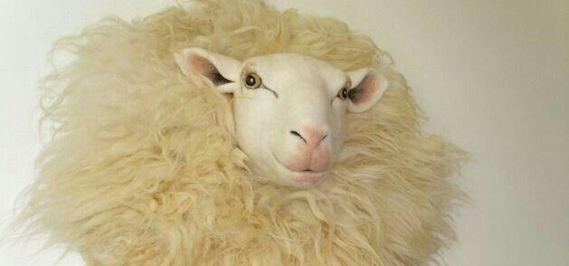 Felted sheep head. Paulien Sijtsema. www.wolinhout.nl.