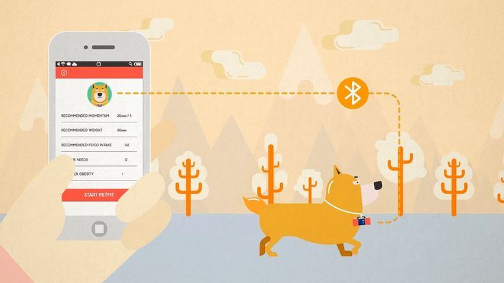 Wearable Device PetFit is another sample of how playful infographic should be