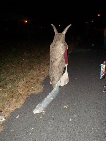 awesome slug costume complete with faux slime trail. Too funny!