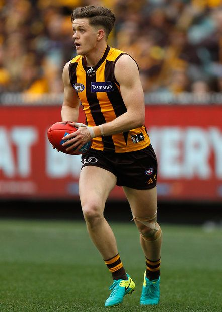 256 Best Images About Hawthorn Hawks On Pinterest West