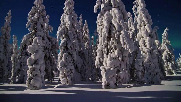 Северное сияние в Финляндии #aurora #Finland