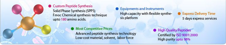 Biosyn offers custom peptide synthesis services based upon your requirement, at very reasonable prices.  We design peptides with a wide range of labels, modifications, scales and purities.