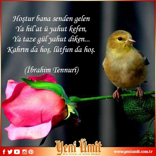 Hoştur bana senden gelen Ya hil'at ü yahut kefen, Ya taze gül yahut diken... Kahrın da hoş, lûtfun da hoş.  (İbrahim Tennurî)  #yeniumitdergi #bulbul #dul #rose #doga #nature #mevla #guzel #good #Allah