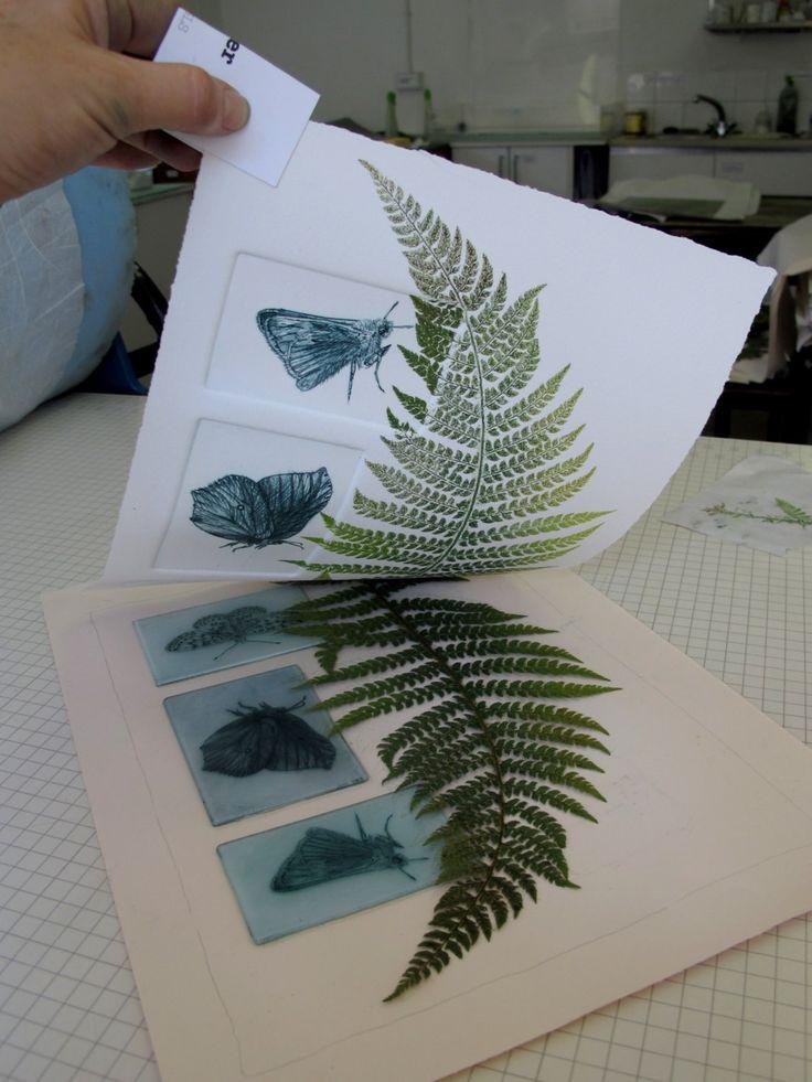 Esta colección de mariposas de seto y helecho fue impresa como parte de un cuerpo más grande de trabajo estudiando Devon setos y