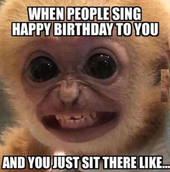 When People Sing Happy Birthday Meme Funny Happy Birthday Meme Happy Birthday Quotes Funny Funny Happy Birthday Pictures