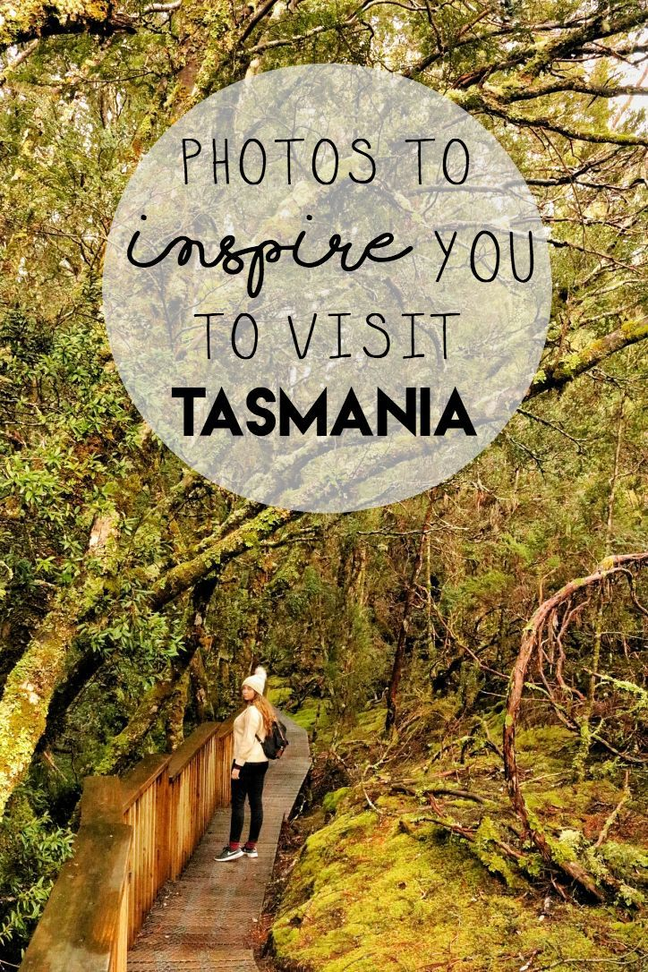 Photos to Inspire You to Visit Tasmania, Australia #travelmatters