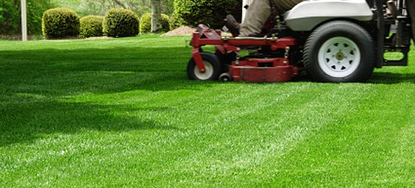 Are you looking for lawn maintenance in Reidsville NC? We are one of the trusted lawn maintenance service provider in NC area. We served more then thousands of our customers with our trusted and professional service. Call us at: 336-432-8758