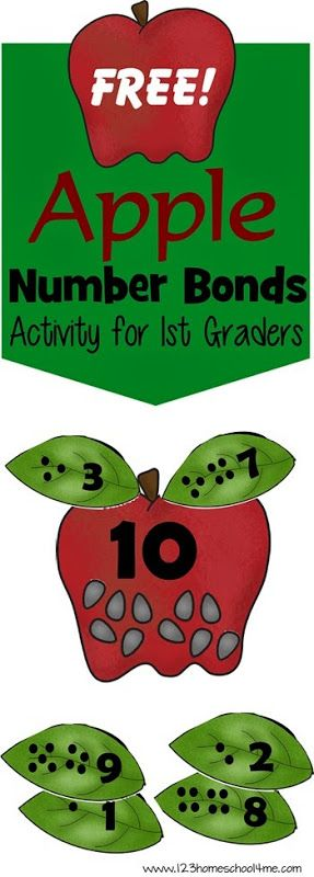 FREE Apple Number Bonds Math Activity. Great fall, hands on educational activity for kindergarten and 1st grade.