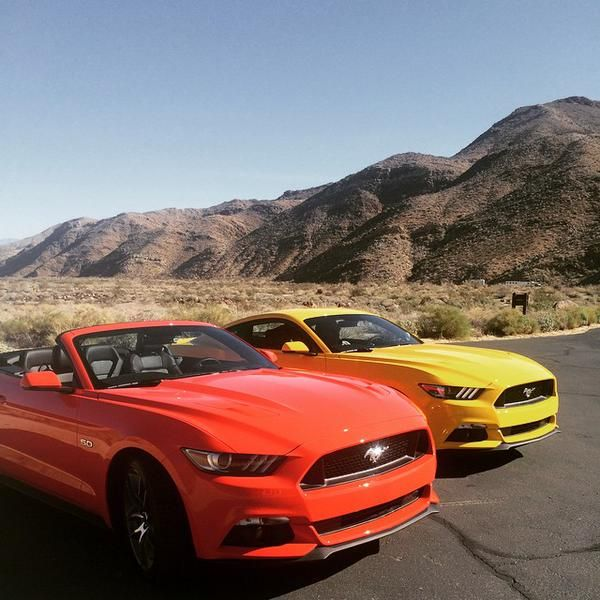 One pony, two pony. Orange pony, yellow pony. #MustangMonday