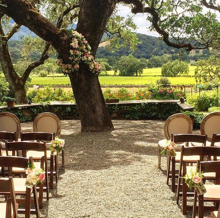 Beltane ranch!  wedding venue, vineyard and gorgeous bed and breakfast