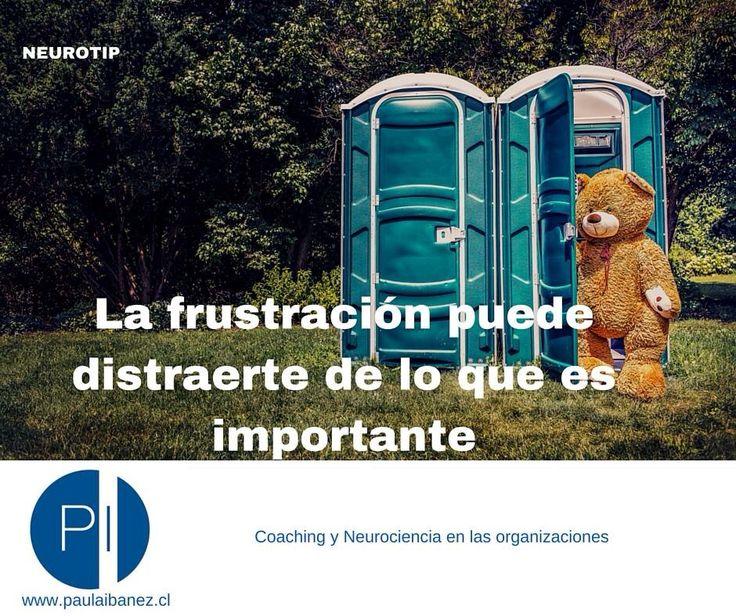 En q focas tu atención #neuroliderazgo #neuromanagement #estrés