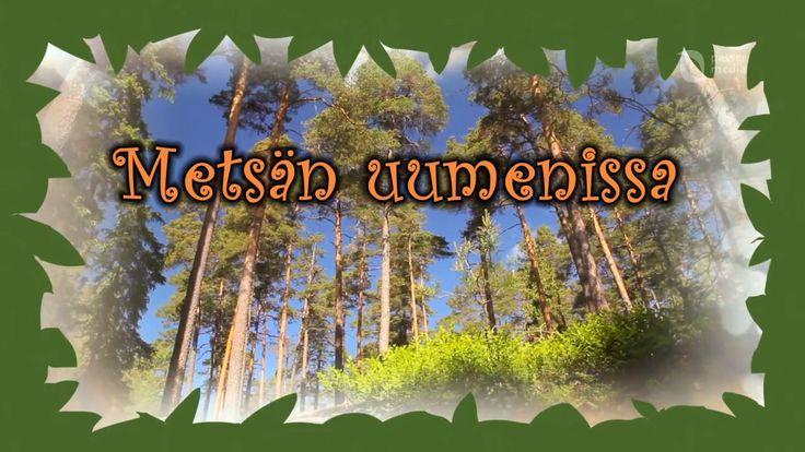 FI - Metsän uumenissa video (16 min.) 1-4 lk.