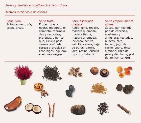 Aromas terciarios o de crianza