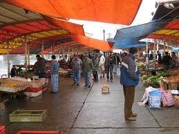 the fish market in Valdivia, Chile.