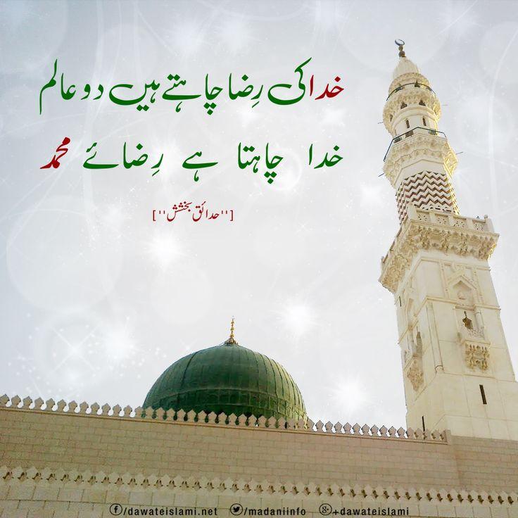 Islamic Quote | by DawateIslami