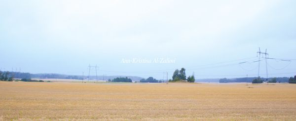 Ann-Kristina Al-Zalimi, inkoo, degerby, syksy, viljapelto, maalaismaisema, landscape