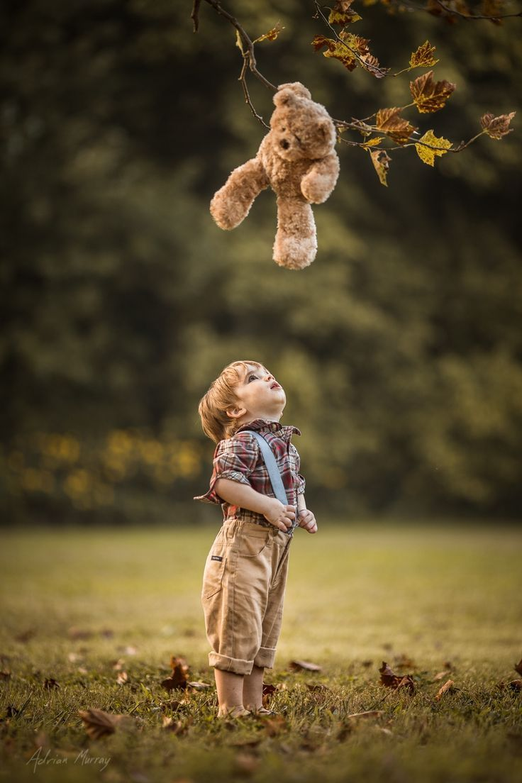 msexplorer:  maya47000:Drop bear by Adrian Murray  Not quite how you describe one, eh?  morphingintome  :-)  Made me smile.
