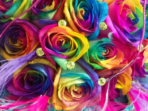 Best 25 rainbow roses ideas on pinterest rainbow for Rainbow colored rose