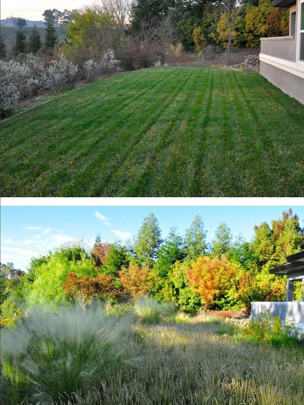 2015 DIY Design Trends: Replacing A Lawn With A Meadow U003eu003e Http:/